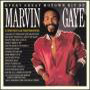 Marvin Gaye Every Great Motown Hit of Marvin Gaye, 1983