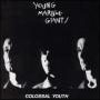 Young Marble Giants Colossal Youth, 1980